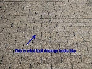 windsor-hail-damaged-roof